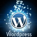 Types of WordPress