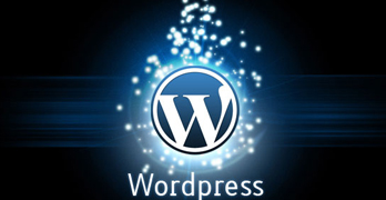 Types of WordPress